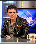 Mar 30, 2016 - Madrid, Spain - Last night, was to have fun at the Anthill, television program, our most international actor Antonio Banderas. The Malaga which is about to release his new film starring Altamira, you can see from next April 1. The film, directed by Hugh Hudson, shows the discovery of the most famous caves of Cantabria and historical site of great importance in the world. Antonio, gives life on this occasion Marcelino Sanz de Sautola who discovered this wonder in 1875 with his daughter Maria, fighting the international scientific community, contempt finding. <br />