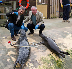 Pictured: Willie Rennie and Peter Barrett met and fed some of the grey seals at Deap Sea World<br /> <br /> Scottish Liberal Democrat leader Willie Rennie focused on the environment on the Holyrood campaign trail as he visited Deep Sea World with Mid-Scotland and Fife candidate Peter Barrett<br /> <br /> Ger Harley | EEm 26 March 2016