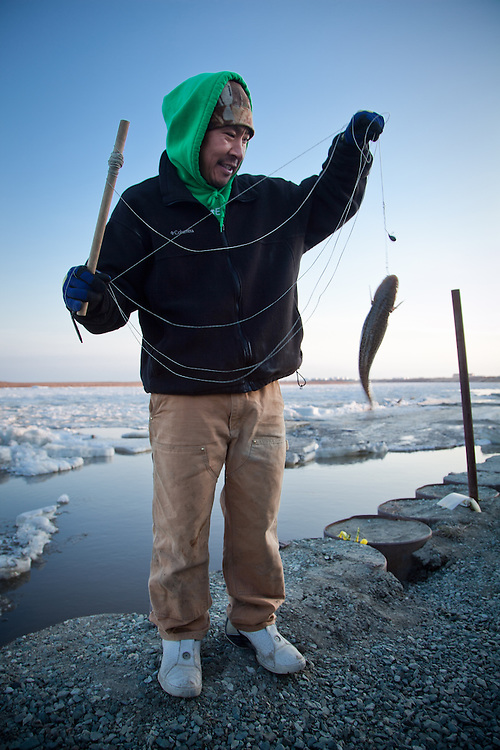 Bethel local, Aaron Mute, is quick to drop a line into the Kuskokwim River as soon as the ice breaks up.