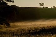 Patos de Minas_MG, Brasil..Paisagem rural ao amanhecer em Patos de Minas, Minas Gerais...Countryside at dawn in Patos de Minas, Minas Gerais...Foto: LEO DRUMOND / NITRO