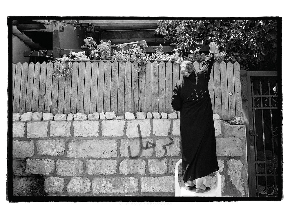 Still hoping to one day return to her house, Maysoon al-Ghawi, mother of five and recently evicted from her home, waters her plants from the outside. Minutes after, settlers who occupy her home, pushed her from the chair and violance errupted.