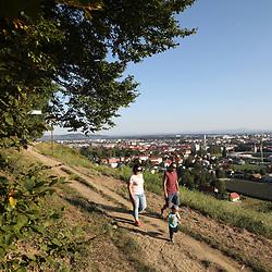 20191030: SLO, Nature - Maribor 2