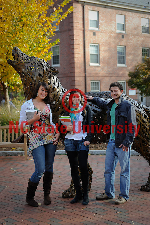 Students walk and talk near the wolf statues and free expression tunnel. Photo by Marc Hall