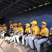 Young players in the dugout during the Norwalk Little League baseball competition at Broad River Fields,  Norwalk, Connecticut. USA. Photo Tim Clayton