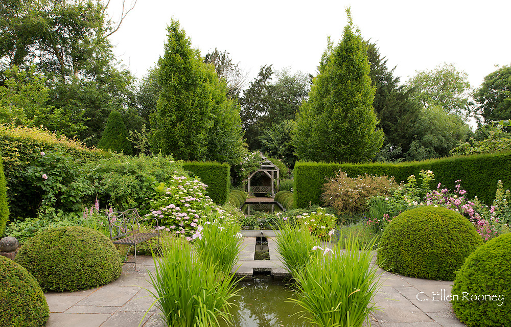 A view of water features, a wooden pergola, hydrangias and Yew topiary in The Rill Garden at Wollerton Old Hall, Market Drayton, Shropshire, UK