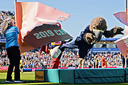 Derbyshires Mascot Freddie the Falcon wins the 2019 mascot race during the Vitality T20 Finals Day 2019 match between Notts Outlaws and Worcestershire Rapids at Edgbaston, Birmingham, United Kingdom on 21 September 2019.