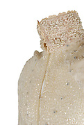 "Prince wardrobe and memorabilia; including Beaded Jacket from 'Under the Cherry Moon' to be auctioned  <br /> <br /> Prince's exquisitely made screen-worn beaded jacket from the 1986 film 'Under the Cherry Moon' will be auctioned by Boston-based RR Auction. <br /> <br /> The stunning lace jacket is covered in intricate, shimmering beadwork and faux pearls, and features a bolero-style front with a long, cape back. The jacket is easily photo-matched to the scene in the film where Prince and Mary are in the convertible under the full moon. <br /> <br /> ""This piece has never been laundered due to the delicate beading, and Prince's makeup is still present on the collar,"" said Robert Livingston, Executive VP at RR Auction. <br /> <br /> Under the Cherry Moon was Prince's second movie as an actor (following Purple Rain), and his directorial debut. The soundtrack—the Parade album—was released to wide acclaim and featured Prince classics including 'Kiss,' 'Mountains,' and 'Girls & Boys.' Boasting ironclad provenance, this is a one-of-a-kind, elaborate wardrobe piece from one of Prince's films of the 1980s.<br /> <br /> The jacket originates from the collection of Prince's assistant, Therese Stoulil.  ""He was an extremely smart, articulate man with a very, very quick wit. He was driven by his creativity—there was always the next record, the next video, the next tour—it was 24/7,"" said Stoulil in a statement posted on the auction house web site.  ""I will treasure those memories as well as the lifelong friendships I have to this day because of Prince and working at Paisley Park,"" added Stoulil.<br /> <br /> ""This is a one-of-a-kind wardrobe piece from one of Prince's films of the 1980's— making it highly collectable,"" said Robert Livingston Executive VP at RR Auction.<br /> <br /> Additional highlights include:<br /> <br /> Prince's black-and-white striped bolero jacket designed by Stacia Lang for the 1993 Act II Tour of Europe, made of a fine silk and featuring two black buttons on the front, three white buttons on each sleeve, and fi"