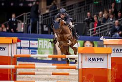 Veldhuis Steven, NED, Haynes GH<br /> KWPN Hengstenkeuring - 's Hertogenbosch 2019<br /> © Hippo Foto - Dirk Caremans<br /> 31/01/2019