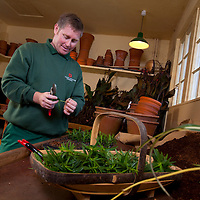 Head Gardener, Toby Beasley, Osborne House, East Cowes, Isle of Wight, England, UK