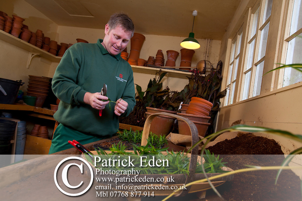 Head Gardener, Toby Beasley, Osborne House, East Cowes, Isle of Wight, England, UK