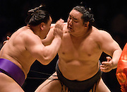 Ama (left) and Asashoryu  compete in the fourth round of Day 2 of Grand Sumo Tournament Los Angeles 2008, Los Angeles Sports Arena, Los Angeles, California