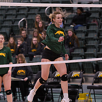 4th year outside hitter Leah Sywanyk (3) of the Regina Cougars in action during Women's Volleyball home game on January 12 at Centre for Kinesiology, Health and Sport. Credit: /Arthur Images 2018