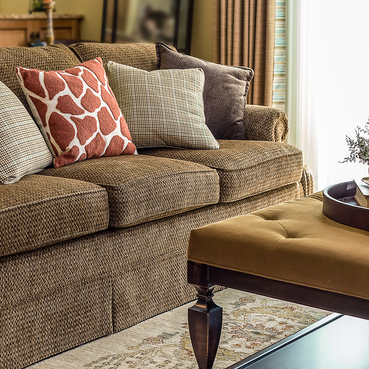 Sofa Detail in Living Room