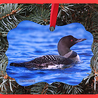 THIS ITEM IS THE FIRST LOON IMAGE (Green Background)<br />
