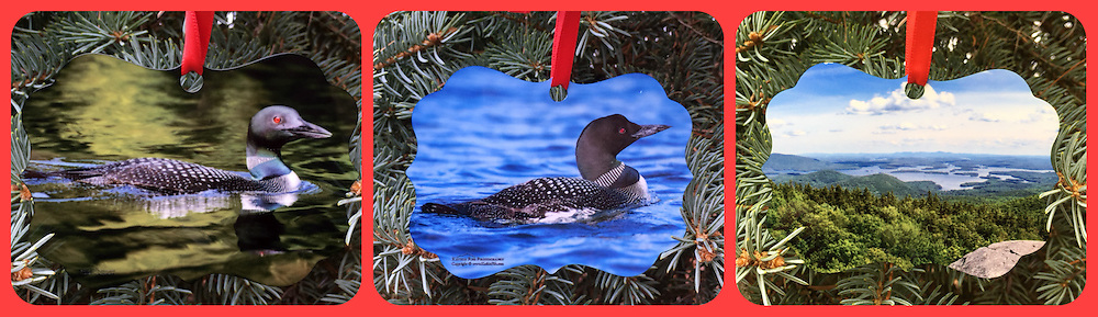 THIS ITEM IS THE FIRST LOON IMAGE (Green Background)<br /> Common Loon and Squam Lake Ornament <br /> Double Sided Photographs printed on Metal. <br /> Front side is the loon with a view from Mt Morgan overlooking Squam Lake on back.<br /> Approx 3x3<br /> Proudly Made in USA
