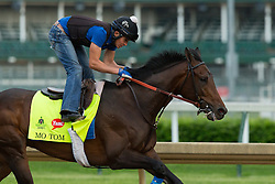 Derby 142 hopeful Mo Tom with Mario Garcia up were on the track for training, Wednesday, May 04, 2016 at Churchill Downs in Louisville.