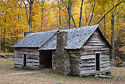Yellow fall leaf colors surround a log cabin of former settlers, on the Tennessee side of Great Smoky Mountains National Park, in southeastern USA.