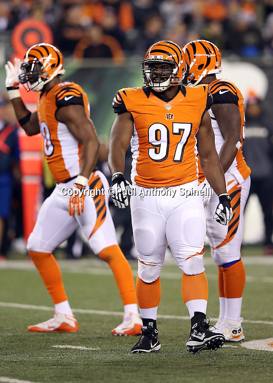 Cincinnati Bengals defensive tackle Geno Atkins (97) looks on during a break in the action during the 2015 week 10 regular season NFL football game against the Houston Texans on Monday, Nov. 16, 2015 in Cincinnati. The Texans won the game 10-6. (©Paul Anthony Spinelli)