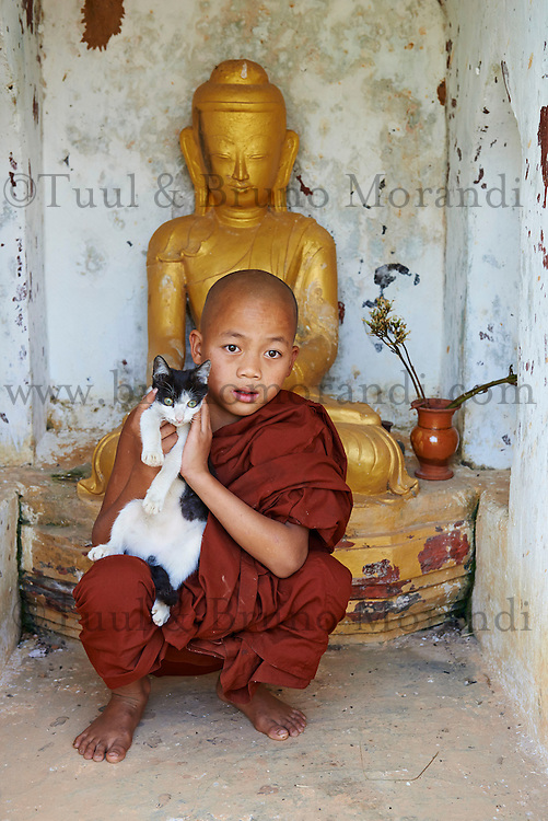 Myanmar (ex Birmanie), Province de Shan, le lac Inle, village de Ywama, jeune moine et son chat // Myanmar (Burma), Shan province, Inle lake, Ywama village, young monk and his cat