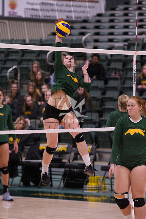 1st year setter Claire Douglas (4) of the Regina Cougars in action during Women's Volleyball home game on January 12 at Centre for Kinesiology, Health and Sport. Credit: /Arthur Images 2018
