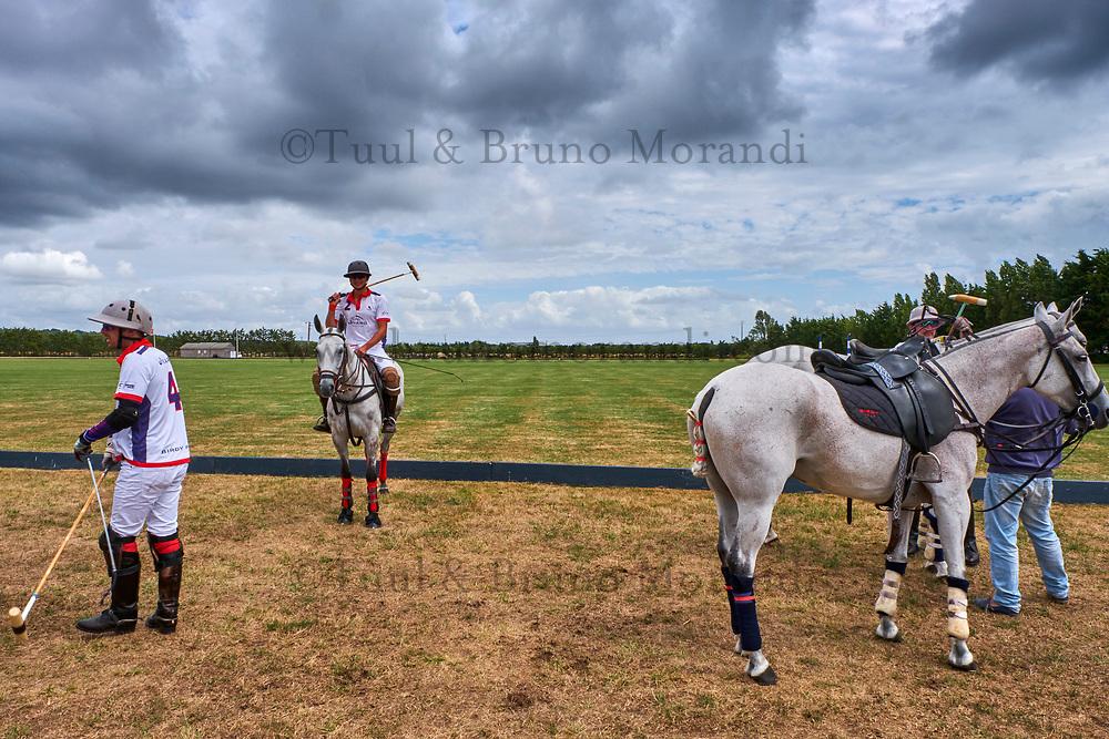 France, Loire-Atlantique (44), La Baule, Brittany Polo Club // France, Loire-Atlantique, La Baule, Brittany Polo Club