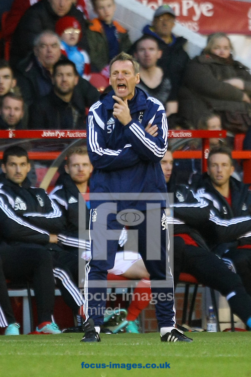 Nottingham Forest Manager Stuart Pearce during the Sky Bet Championship match at the City Ground, Nottingham<br /> Picture by Paul Chesterton/Focus Images Ltd +44 7904 640267<br /> 08/11/2014