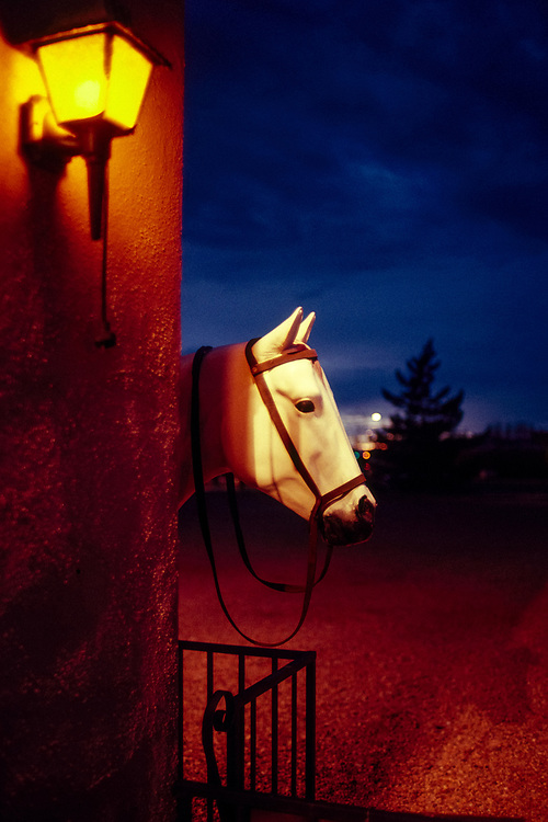 Fake horse's head behind an adobe building in Tombstone, Arizona.