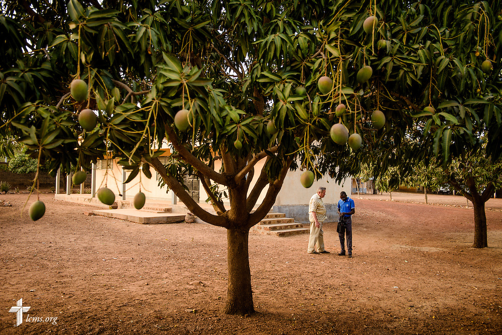 The Rev. Fred Reinhardt, area facilitator for Francophone Africa-West and Central, talks with a student at the Lutheran Center for Theological Studies (CLET) on Wednesday, Feb. 15, 2017, in Dapaong, Togo. Fruit and nut trees grow on the center grounds. LCMS Communications/Erik M. Lunsford