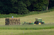 Chester, New York - Taking advantage of beautiful weather on the first day of summer, a farmer bales in a field at Brookview Farm on June 21, 2014.  The farmer is a moving bales in the wagon to make room for more hay.