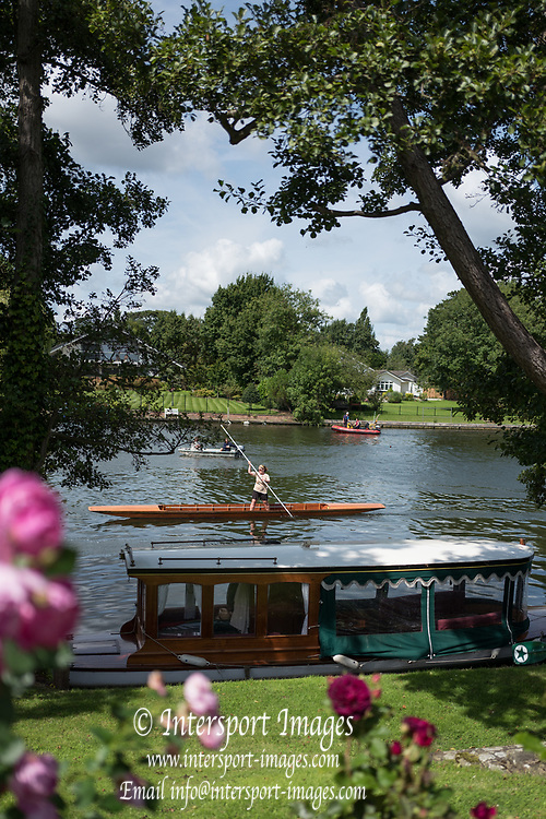 "Maidenhead, United Kingdom.  ""Single"", ""Thames Punting Club Regatta"", Bray Reach.<br />