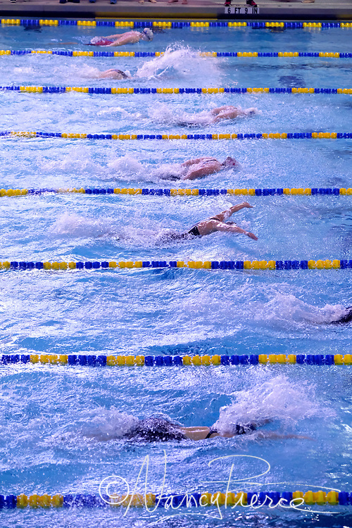 This a swim meet hosted by Queens University.