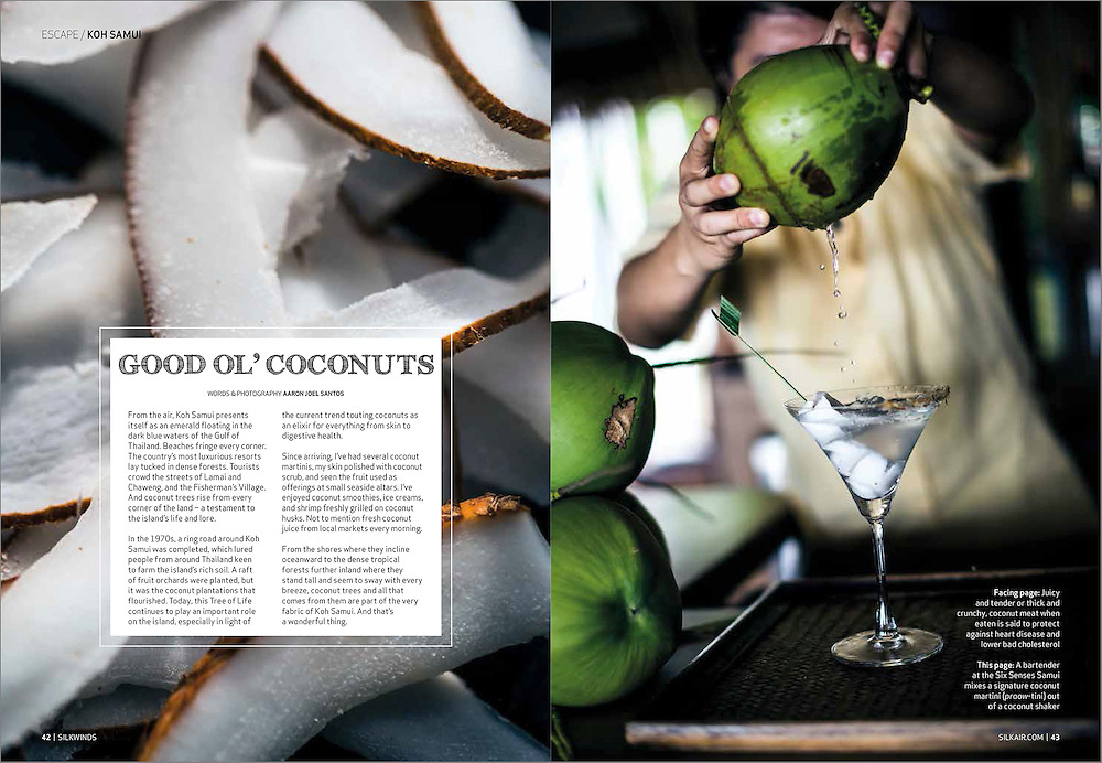 A featured photo essay on Koh Samui's coconuts.