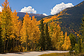 Colorado Fall 2014