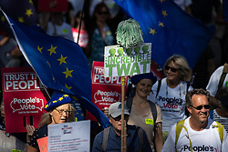"© Licensed to London News Pictures . 21/09/2019. Brighton, UK. A mop head is used to depict Prime Minister Boris Johnson above a placard reading "" The Incredible Twat "" . Thousands attending a march organised by the People's Vote for a second EU referendum on Brexit pass through Brighton and along the Promenade during the first day of the 2019 Labour Party Conference from the Brighton Centre . Photo credit: Joel Goodman/LNP"
