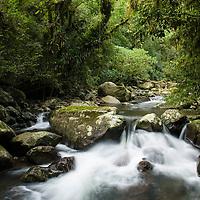 Vale do Arroio Encantado, Reserva Biologica da Serra Geral, Barra do Ouro, Maquine, Rio Grande do Sul, Brasil.  foto de Ze Paiva/Vista Imagens