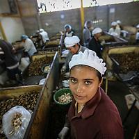 El Salvador: Fairtrade