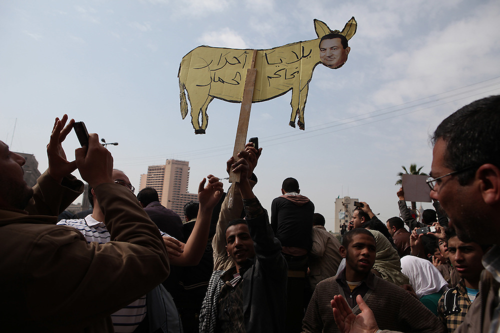 A protester holds a sign with Mubarak's face pasted on a donkey.