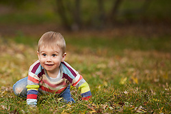 Young Boy Crawling on Grass in Park
