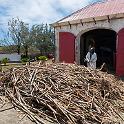 Processing Sugar Cane at St Nicholas Abbey Sugar Cane Plantation and Rum Distillery in Saint Peter, Barbados