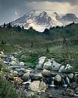 Mount Rainier 14,411¬+ft (4,392¬+m) from Edith Creek, Mount Rainier National Park Washington USA
