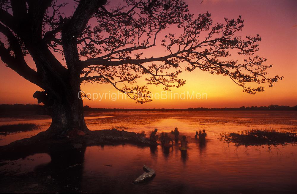 Sri Lanka. Bathers at a tank at sunset, ancient city of Anuradhapura.