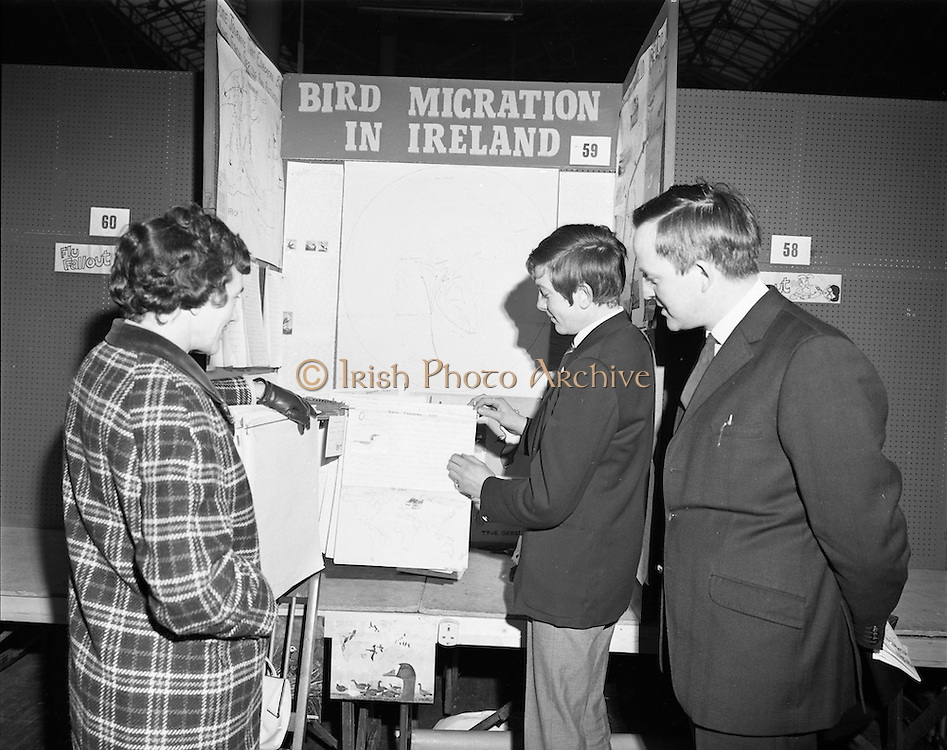 01/01/1970.1st January 1970 .Aer Lingus Young Scientist of the Year Exhibition at the RDS..Frank Keohane (cente) explains his exhibit 'a study of bird migration in Ireland to prove that Ireland is the crossroads to bird migration throughout the world' to his mother Mrs Keohane and Diarmaid O'Donnabhan, headmaster of St Patricks Comprehensive School, Shannon at which Frank is a pupil.