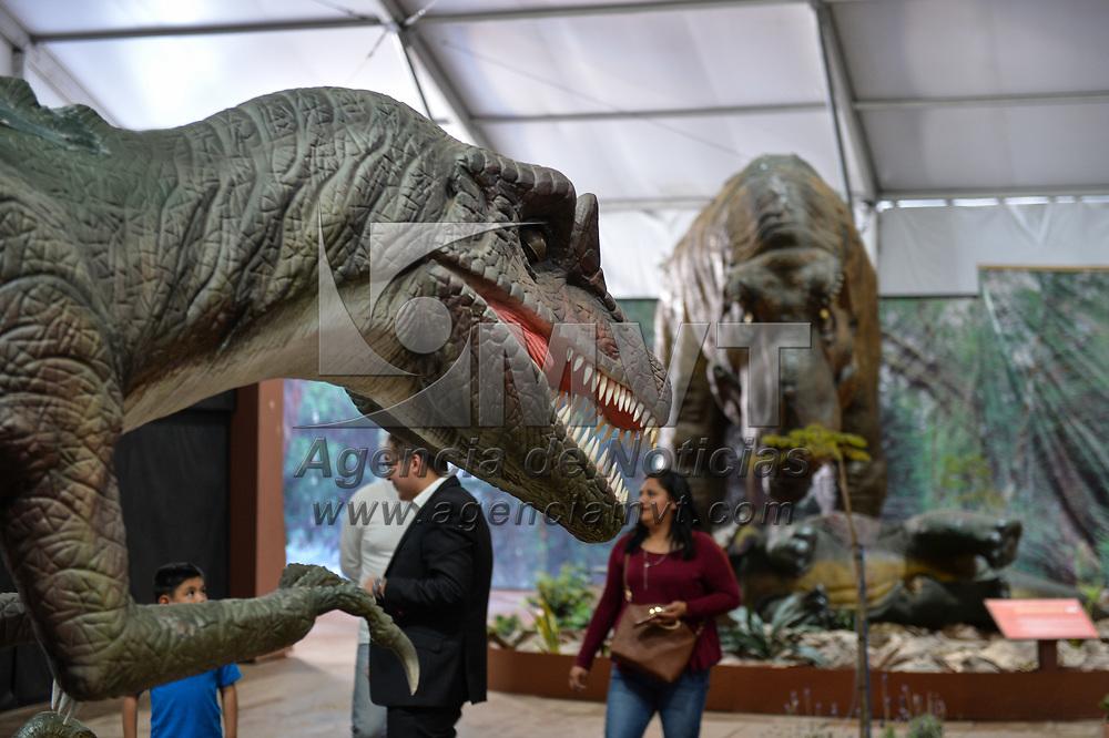 Toluca, México.- Aspectos de la exposición itinerante Gigantes del Desierto que permanecerá en la explanada del Teatro Morelos. Agencia MVT / Mario Vázquez de la Torre.
