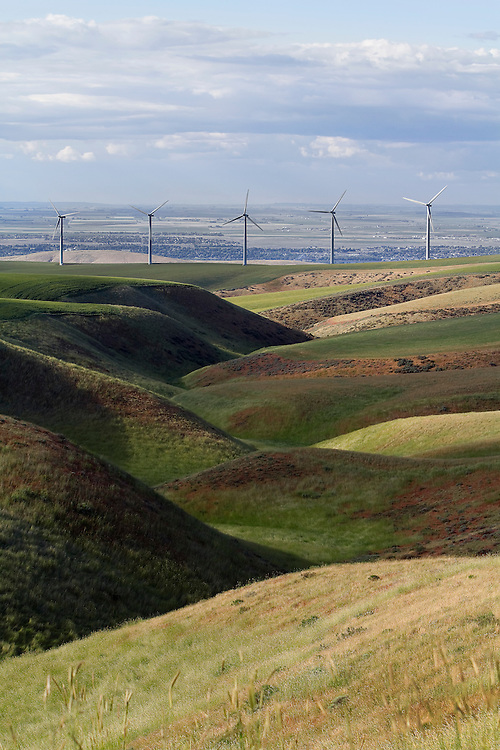 These wind towers have a very small footprint, and even including the service roads take only a fraction of the farmer's land. Landowners are reimbursed for use of the land. Nine Canyon Wind Project, Richland, Washington.