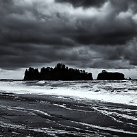 Quinault Rain Forest, Olympic National Park, Rialto Beach, Mora National Park, WA<br /> edited &amp; converted to B&amp;W 4/17/18