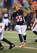 Cincinnati Bengals outside linebacker Vontaze Burfict (55) gets in position during the NFL AFC Wild Card playoff football game against the Pittsburgh Steelers on Saturday, Jan. 9, 2016 in Cincinnati. The Steelers won the game 18-16. (©Paul Anthony Spinelli)