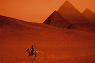 Woman on Horse near Pyramids