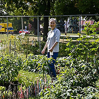 Community gardener.