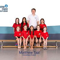 Matthew Taal - Group 2