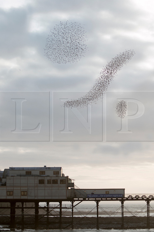 © Licensed to London News Pictures. 18/03/2014. Aberystwyth, UK. Starlings appear to make a percentage sign, on the evening before the UK budget is announced, in the sky above the pier. Several thousand Starlings gather at sunset above the Pier in Aberystwyth. The gathering is called a Murmeration and is believed to act as a method of evading predators before coming in to roost for the evening. Photo credit : Jon Freeman/LNP